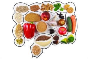 jelita, żywność, wchłanianie substancji odżywczych