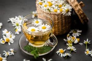kwiaty rumianki, filiżanka