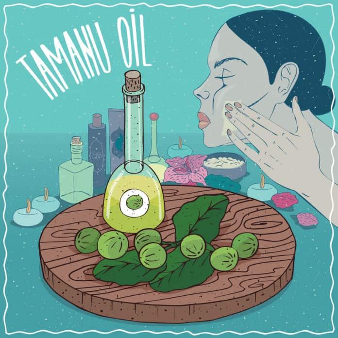 olej tamanu, pielęgnacja skóry, obrazek