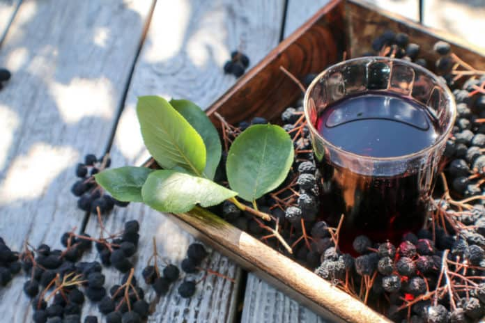 sok z aronii, szklanka, owoce, liście