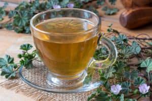malwa herbata, napar z malwy