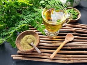 herbata moringa