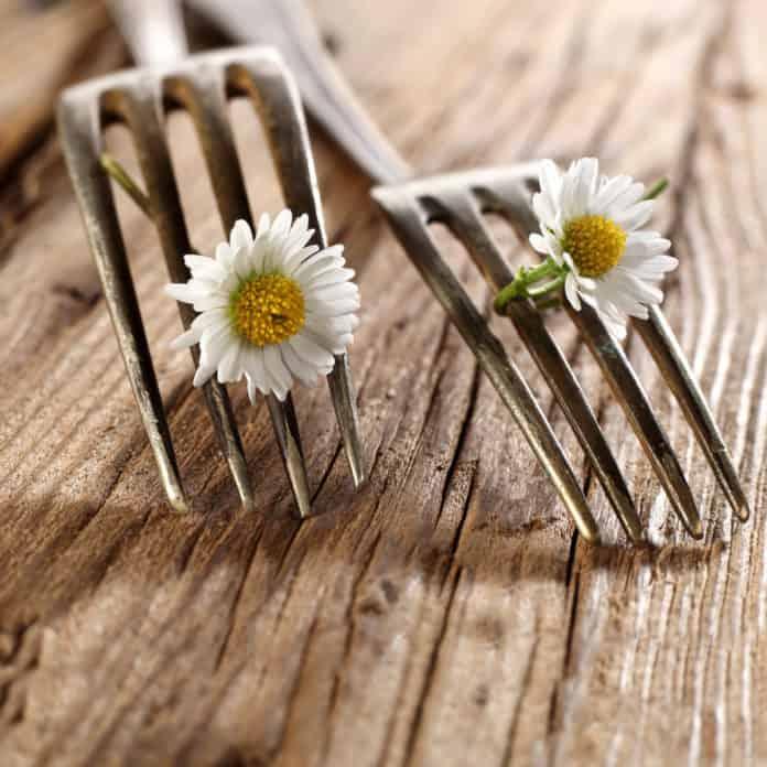 widelce, kwiaty rumianku