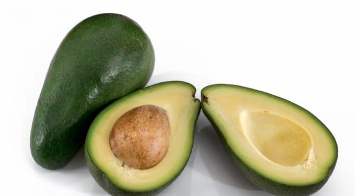 owoce awokado na białym tle